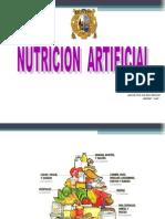 Clase 1 Nutricion Artificial Generalidades Unmsm 2014 (1)