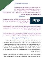 محمود الغنزوي سيف الدولة