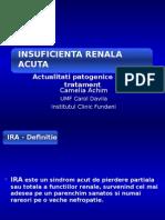 IRA 2013.ppt
