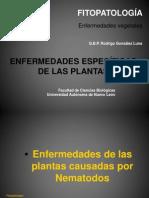 Enfermedades Especificas de Las Plantas (Nematodos)