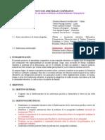 Modelo de Proyecto de Aprendizaje Cooperativo (2015!09!13)