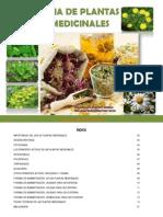 Guia Plantas Medicinales_Donato Moscoso_Beatriz Rodriguez