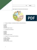 Ficha de Ciências - Alimentação