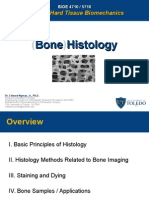 Bone Histology Lecture 2015 University of Toledo