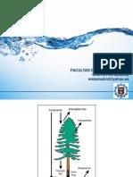 5 - Abstracciones hidrológicas
