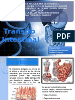 Transito Intestinal