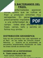 3-Tizones Bacterianos Del Frijol