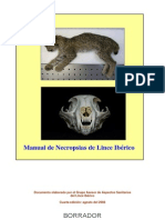 Manual Necropsia Gato
