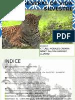 Ley General de Vida Silvestre