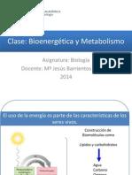 Clase_21_Metabolismo-simplificado.pdf