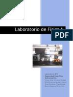 laboratorio capacidad calorifica