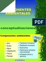 2 Componentes Problemas Ambientales