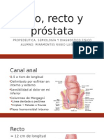 Ano, Recto y Próstata - PROPEDEUTICA