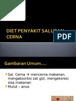 Diet Saluran Cerna