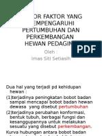 TPDI_daging-209