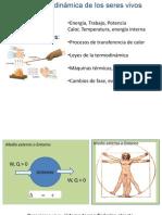 Metabolism o 2014