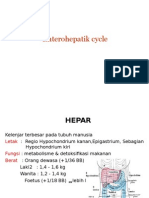 Presentasi Siklus Enterohepatik