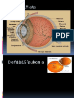 Referat Glaukoma sekunder