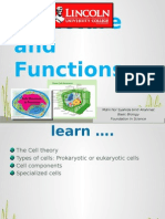 L1_Cells Structure and Functions