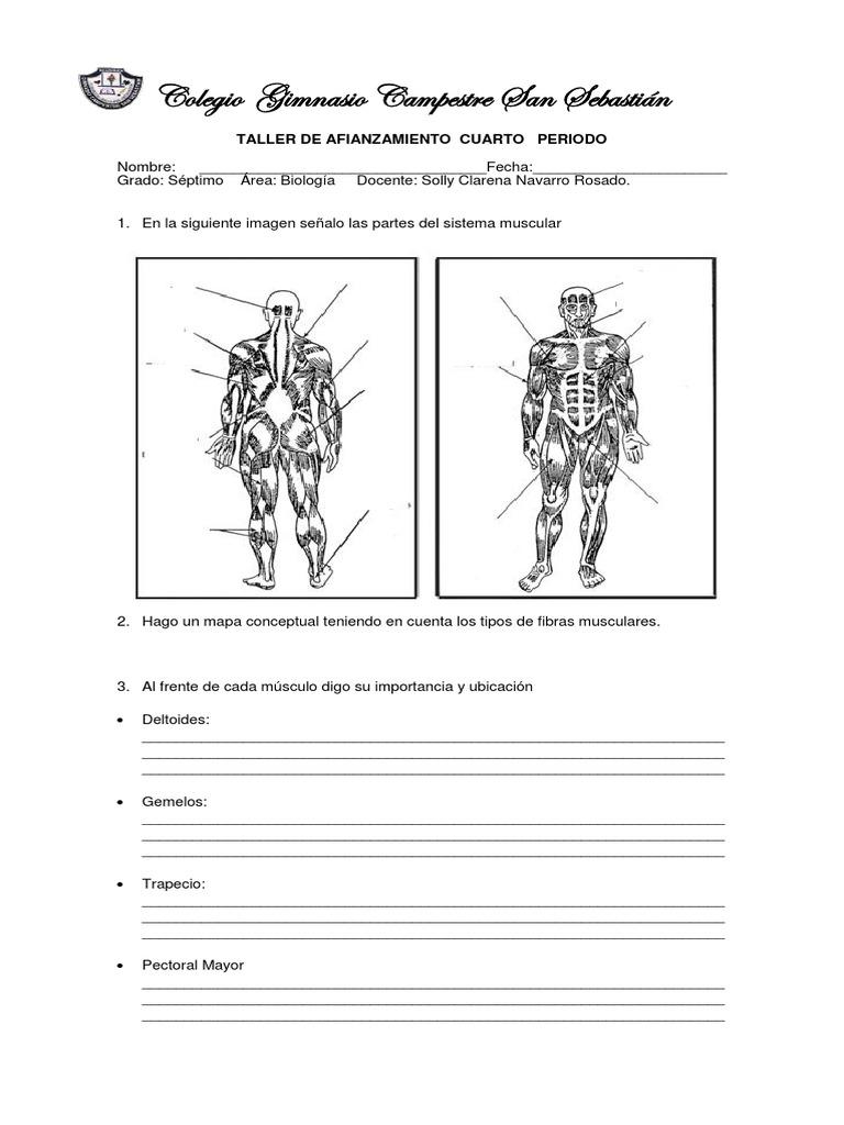 Taller de Repaso 7 Biología