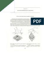 18.Interventii_chirurgicale_pe_vase_si_nervi.pdf