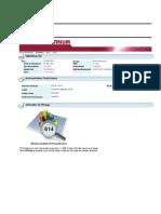 Informe Platinum