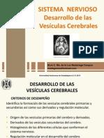 Vesículas Cerebrales 2015