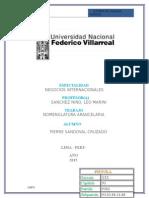 aduanas-2015PIERRE