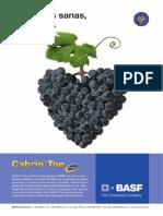 DOSSIER_VIDA_RURAL_ribera_de_duero.pdf