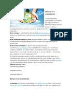 Definición de la sustentabilidad.docx