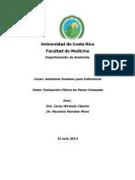 Taller Demostrativo de Enfermería Sobre La Evaluación de Los Pares Craneales.docx 2