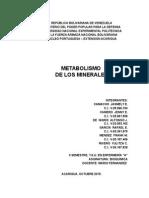Bioquímica - Minerales