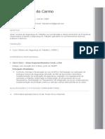 Modelo de Curriculum 1 Preenchido (1)