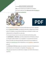 DEFINICIÓN DERELACIONES LABORALES.docx