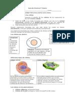 Guía de Ciencias 5