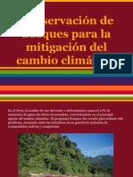Conservación de bosques para la mitigación del cambio climático.pptx