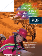 Diagnostico Sociolinguistico 2008