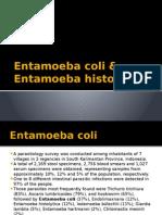 Entamoeba Coli & Histolytica