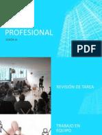 Sesióon III-perfil Profesional