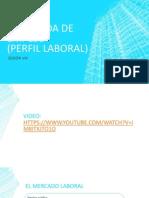 Sesióon Viii-perfil Laboral