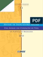 IBGE Sintese Indicadores Sociais 2013