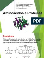 _Aminoacidos