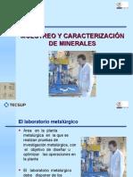 Muestreo y Caracterización de Minerales