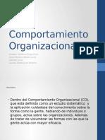 Comportamiento Organizacional equipo chilotime.pptx