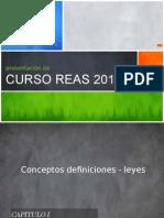 Presentacion REAS