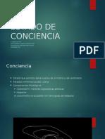 Estado de Conciencia - Copia (1)