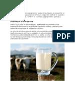 Proteínas de la leche de vaca