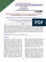 PAPER 14.pdf
