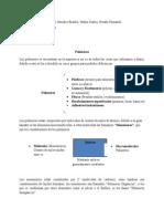 Resumen Polímeros