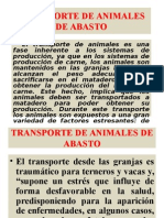 Transporte de Animales de Abasto